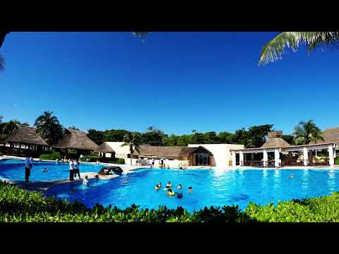 Barcelo Maya Dolphinarium – Swim With Dolphins in Riviera Maya, Mexico
