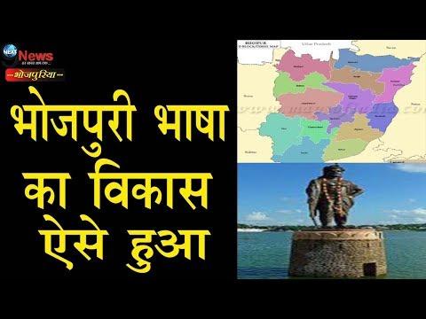 देश दुनिया में भोजपुरी की अलग पहचान के इस पहलू से आप भी होंगे अनजान | Bhojpuri Global Dominance