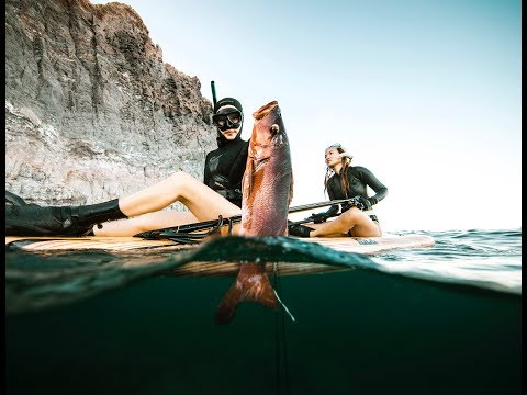 Exploring and diving the sea of Cortez – Baja Mexico