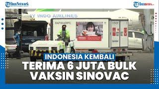 Indonesia Kembali Terima 6 Juta Bulk Vaksin Covid-19 dari Sinovac China