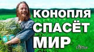 КОНОПЛЯ 2.0 - YouTube