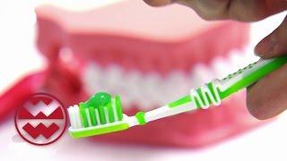 Zähne: So Werden Sie Strahlend Weiß   Welt Der Wunder