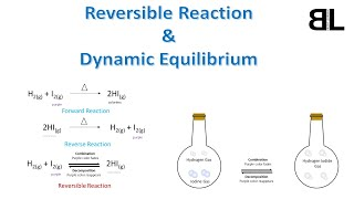 Reversible Reaction and Dynamic Equilibrium