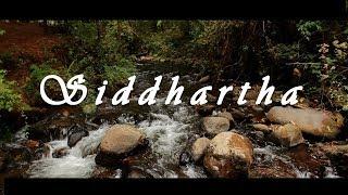 Siddhartha   Cortometraje