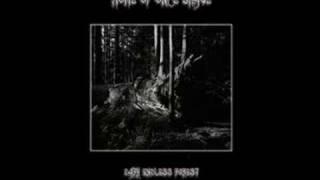 Nachtfalke - Home of once brave
