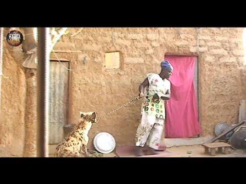 Musha Dariya [ Dan Auta Da Wasan Kura ] Video