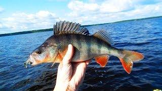 Рыболовная база черкасово