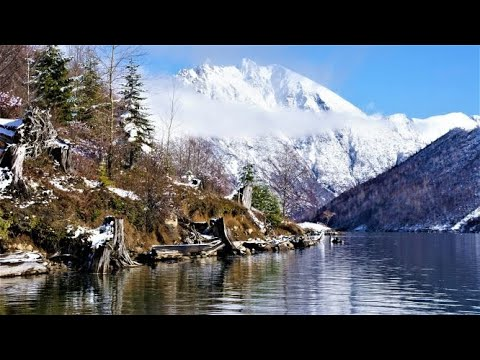 Experiencing Coldwater Lake's Natural Beauty at Mount Saint Helens National Volcanic Monument