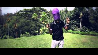 Perfect Giddimani - Better Days [Official Video 2013]