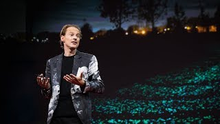 Thumbnail for A smog vacuum cleaner and other magical city designs | Daan Roosegaarde