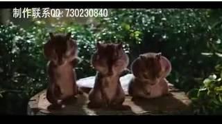 386 Wedding Trailer Cartoon Funny Animal Humor Star Wedding Opening Film HD Version