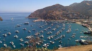 Go To Catalina Island