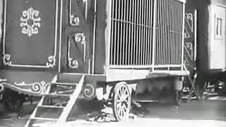Charlie Chaplin in Lion's Cage Funny Video