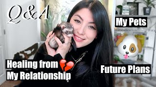 Pets, Healing from my Relationship, and Future Plans | Emzotic Q&A