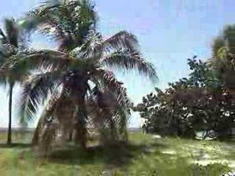 Villa Cuba***