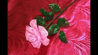 Фото обзор Розовые розы