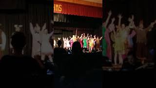 Freak Flag Shrek the Musical