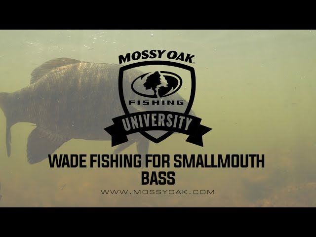 Fishing for Smallmouth Bass in Small Rivers and Streams