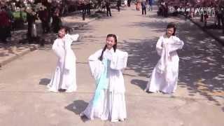 Chinese Dance Under the Cherry Blossom Tree -- 樱花·惊鸿舞