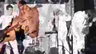Macrosick 'Jerkweed Inspector' music video