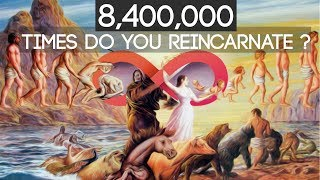 8,400,000 Times Do You Reincarnate In Hinduism