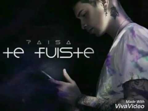 Te Fuiste (Audio Oficial) - Paisa Vlogs