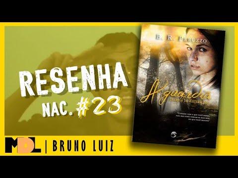 Resenha Nac. #23 - Diário de Extermínio: A Guardiã do Braian Peruzzo - MDL