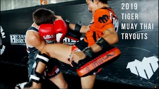 Tiger Muay Thai Tryouts 2019 Full Documentary