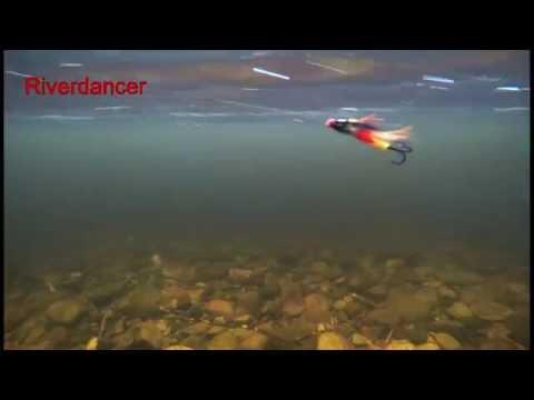 Riverdancer fly underwater