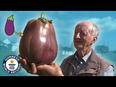 The Amazing Giant Vegetable Showdown You Never Knew About