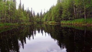 Рыбалка и сплавы по таежным рекам