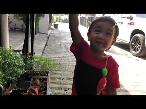 Aktivitas Pagi di Rumah Zara Cute Little Kenzo dan Sakura Chan | Bermain sambil Belajar