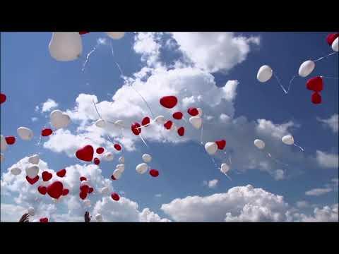 "Peabo Bryson~ ""  Let The Feelin' Flow ""  ❤️♫ 1981"
