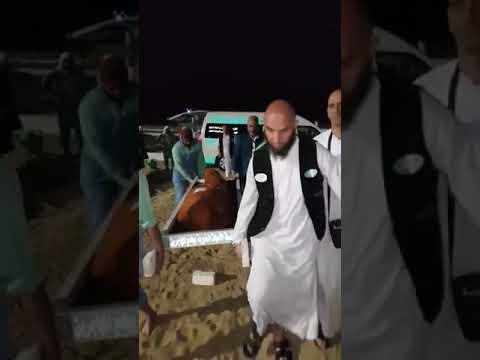 شاهد جنازة جزائري توفي في البقاع المقدسة مكة المكرمة ادعوا له بالرحمة والمغفرة