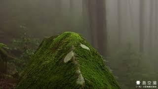 小豆島の秋2020