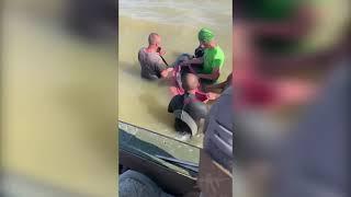 В Херсонской области полицейские вместе с отдыхающими спасли дельфина. ВИДЕО