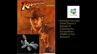 Raiders of The Lost Archaea – Extraordinary Wildlife in Your Backyard Season 2 Episode 3