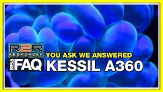 R2R FAQ: Answering more questions about the Kessil A360 LED Light