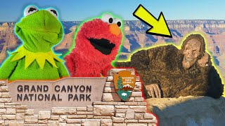 Kermit the Frog and Elmo Visit the Grand Canyon! (Ft. Bigfoot)