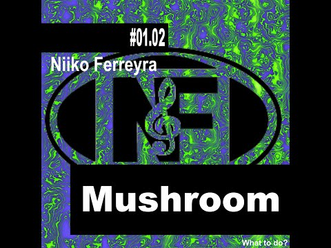 Niiko Ferreyra - Mushroom (Original Mix) Mp3