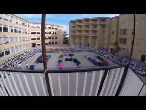 Video Youtube Sant Vicenç de Paül