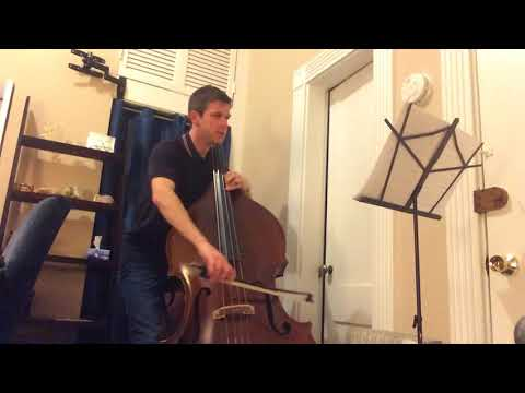 Shostakovich Symphony No.5 1st Movement (double bass excerpt) Take #1