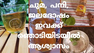 4 cold, cough and fever remedy for ( 1+ year old babies) | Mommacool | Malayalam