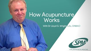 How Acupuncture Works - by Lloyd G. Wright, LAc, DNBAO