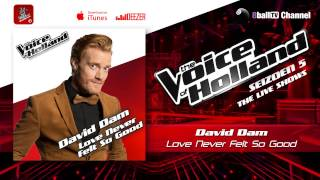 Gambar cover David Dam - Love Never Felt So Good (The voice of Holland 2014 Live show 5 Audio)