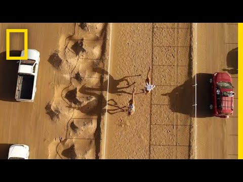 The Ancient Tradition of Camel Racing, as Seen From Above | National Geographic