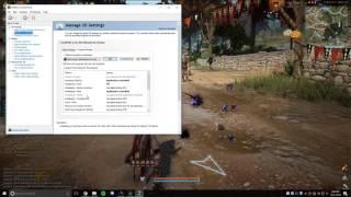 Black Desert Online 40 FPS