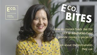 E Co. bites: How do climate funds provide money to projects? What instruments do they commonly use?