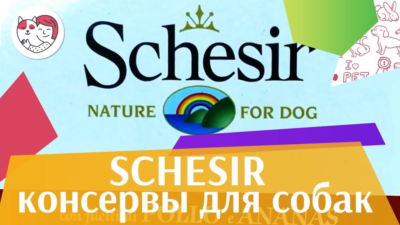 Schesir консервы для собак на  ilikepet