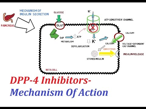 0 dpp 4 inhibitors mechanism of action steemit dpa diagram for ford 3600 at edmiracle.co